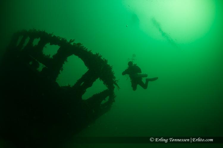 divers-118