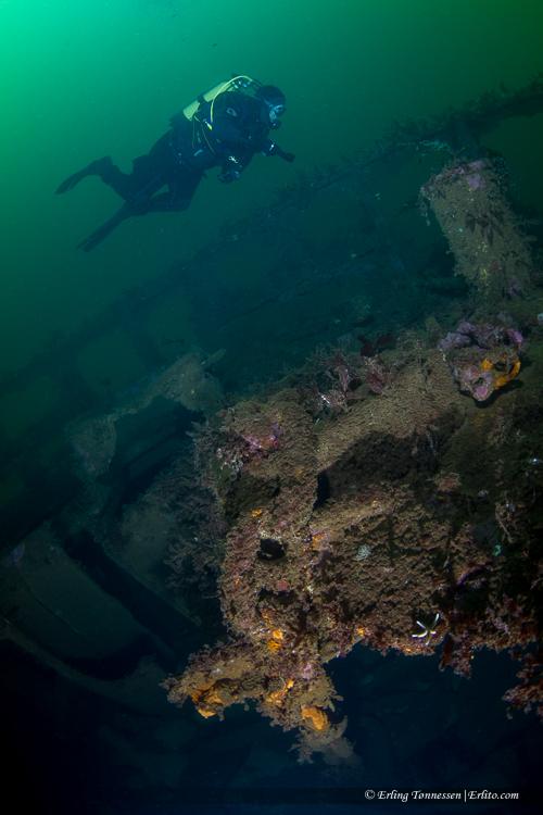 divers-126