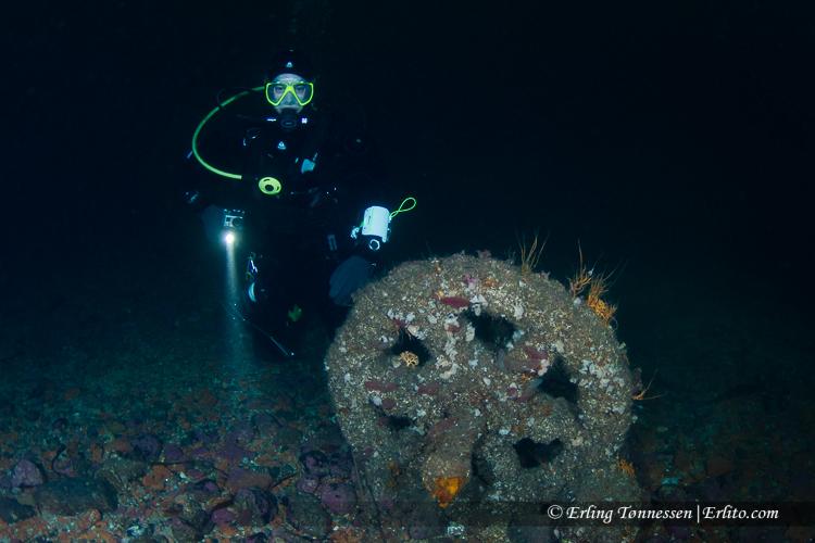 divers-167