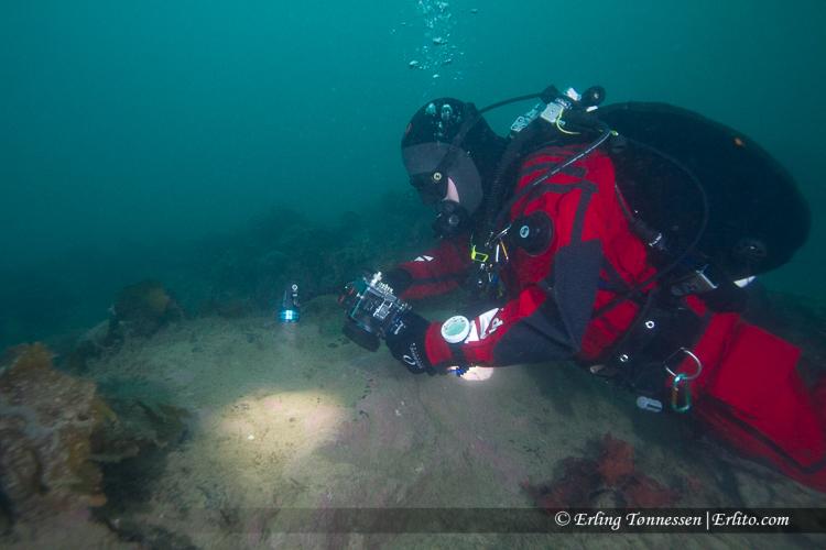 divers-182