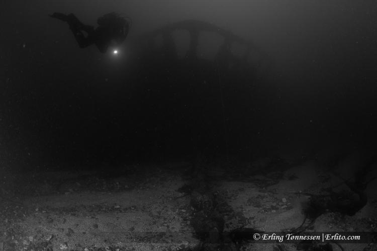 divers-185