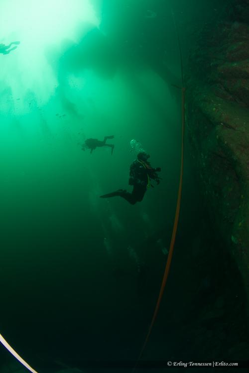 divers-230