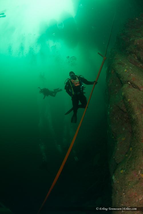 divers-231