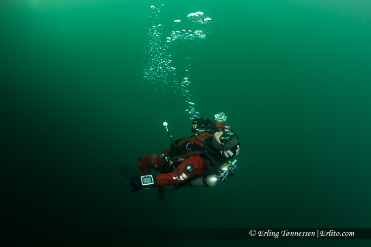 divers-234