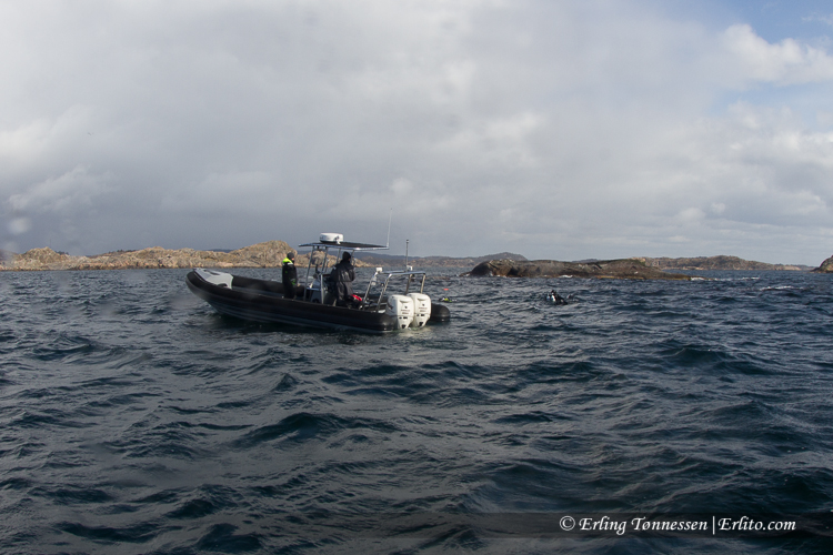 divers-245
