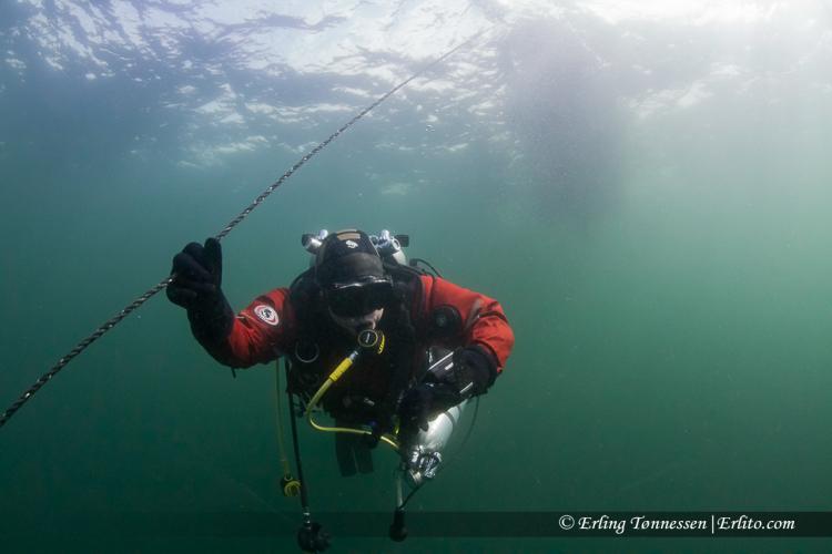 divers-248