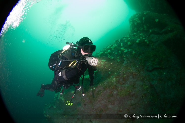 divers-254