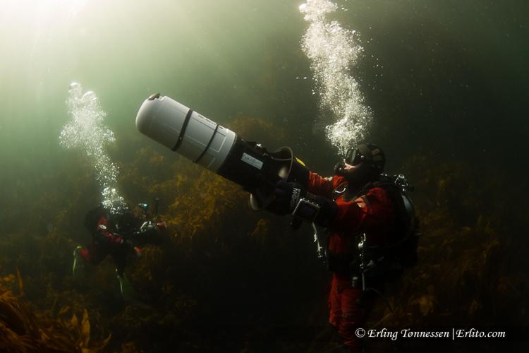 divers-259