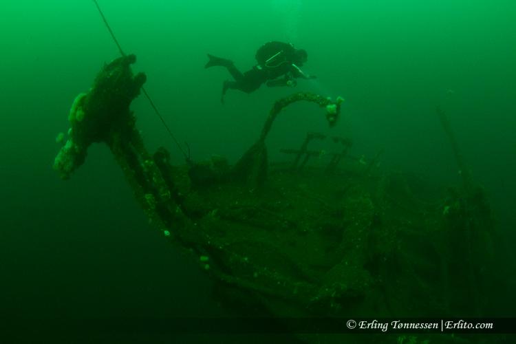 divers-270