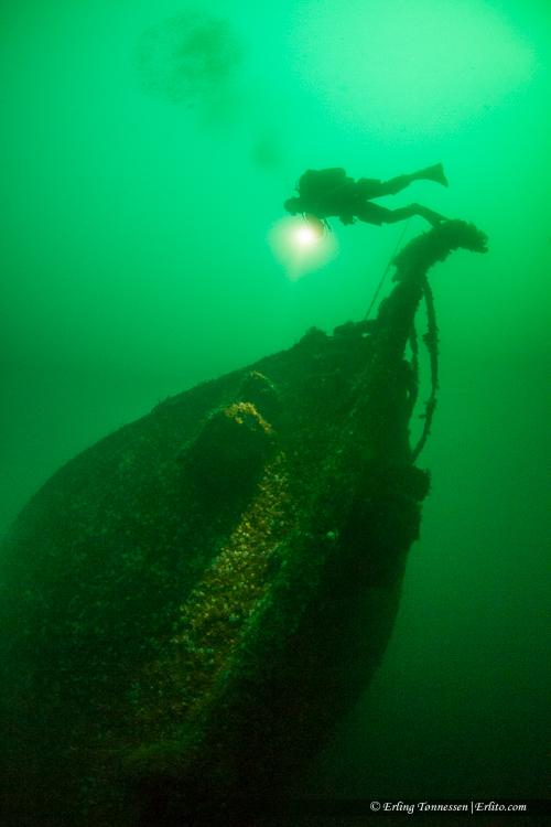 divers-273