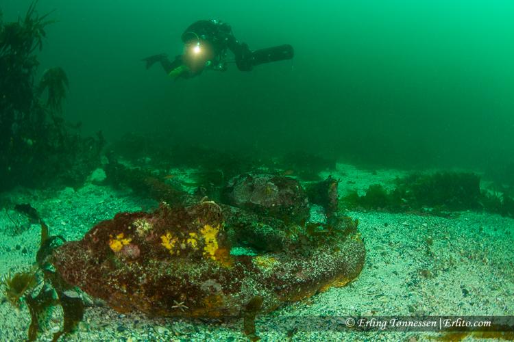 divers-276