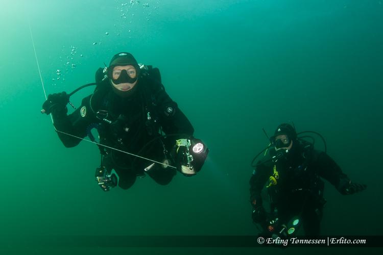divers-290