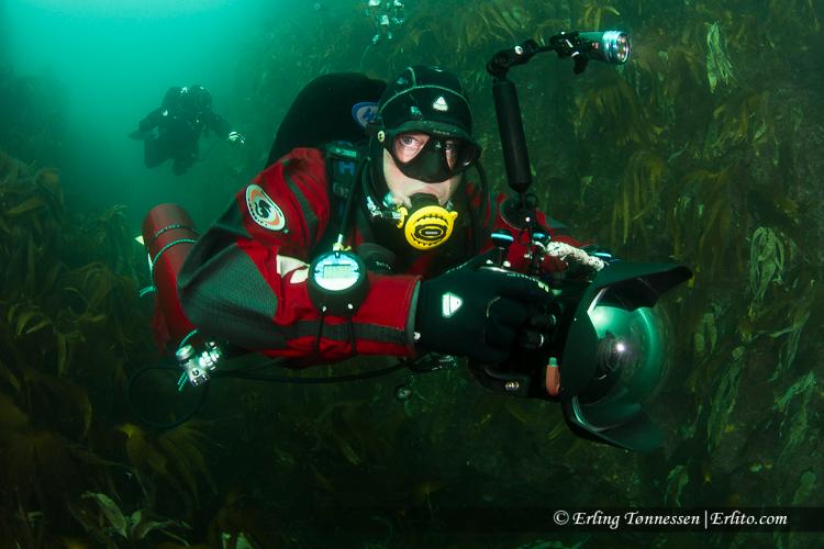 divers-293