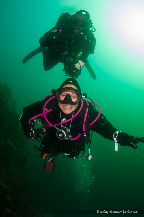 divers-295