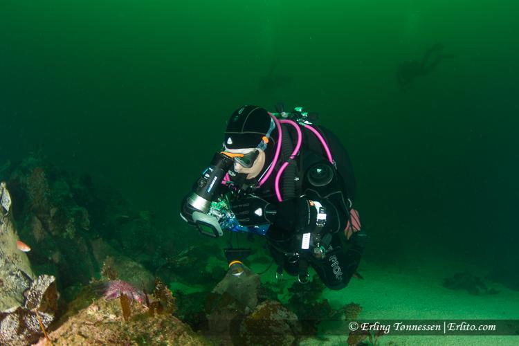 divers-296