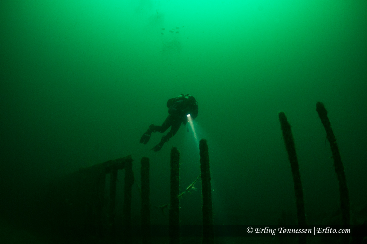 divers-48