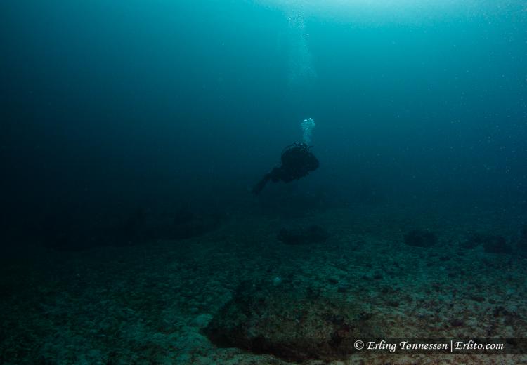 divers-5