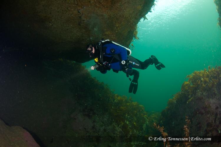 divers-53