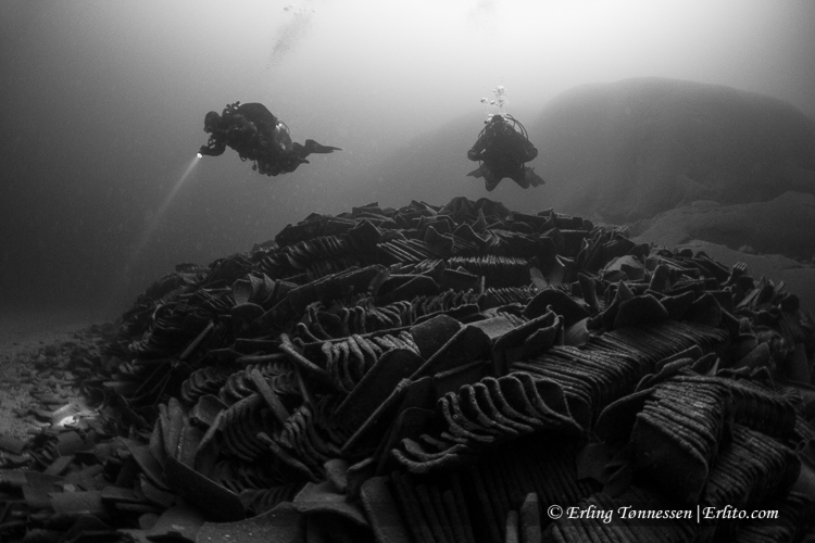 divers-80