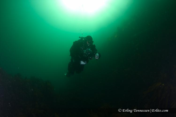 divers-88