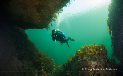 Diver entering the Clubhouse. Picture from Vardeholmen Lindesnes
