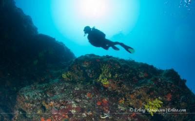 Diver at the island pasman in Croatia.