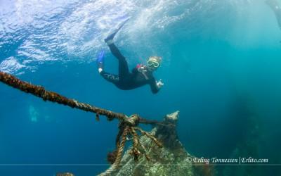 Diving Bali-153