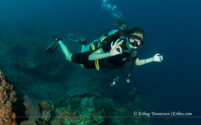 Diving Bali-161