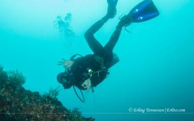 Diving Bali-52