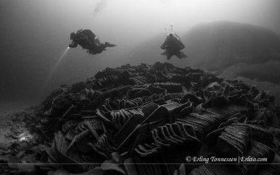 Two Divers at the remains of the old unknown shipwreck called Roof tiles wreck