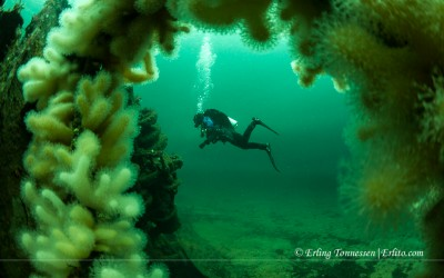 A diver seen through the railings on Ds Savonmaa