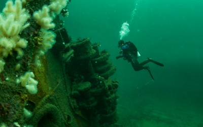 A diver at the bow of the wreck Savonmaa outside of Mandal