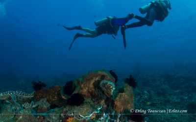 drift divers. Picture taken at Nusa penida, Bali