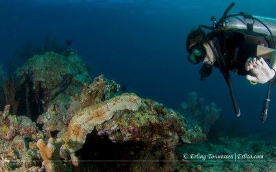 Semya and a sea cucumber at Jemeluk Dropoff, Amed Bali
